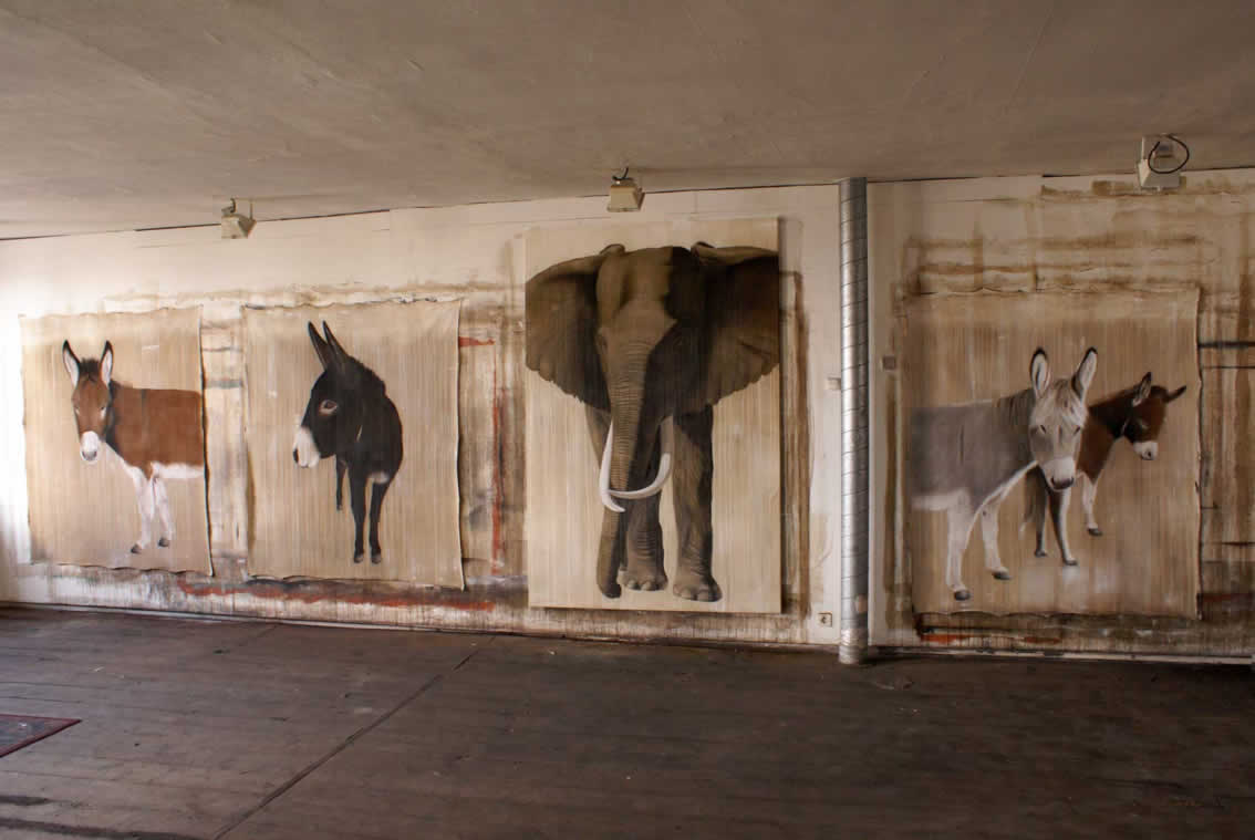 Timba Anes elephant-donkey Thierry Bisch painter animals painting art decoration hotel design interior luxury nature biodiversity conservation