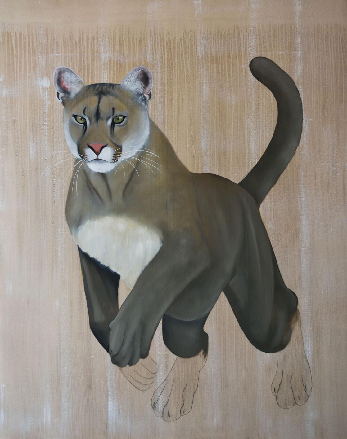 puma concolor coryi cougar puma thierry bisch animal painter