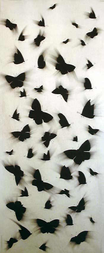 Papillons black-butterflies-flying Thierry Bisch painter animals painting art decoration hotel design interior luxury nature biodiversity conservation