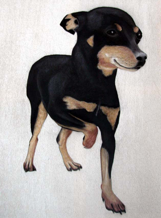 Chien Pinscher dog-pinscher-miniature-pinscher-pet Animal painting by Thierry Bisch pets wildlife artist painter canvas art decoration