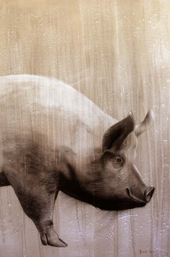 Cochon pig-pork Animal painting by Thierry Bisch pets wildlife artist painter canvas art decoration