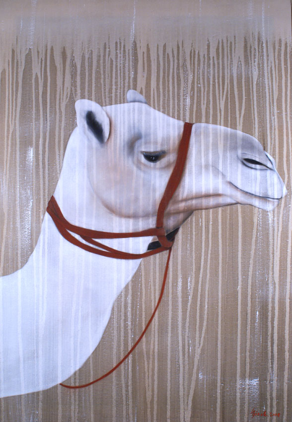 WHITE CAMEL Camel-dromedary-white Animal painting by Thierry Bisch pets wildlife artist painter canvas art decoration
