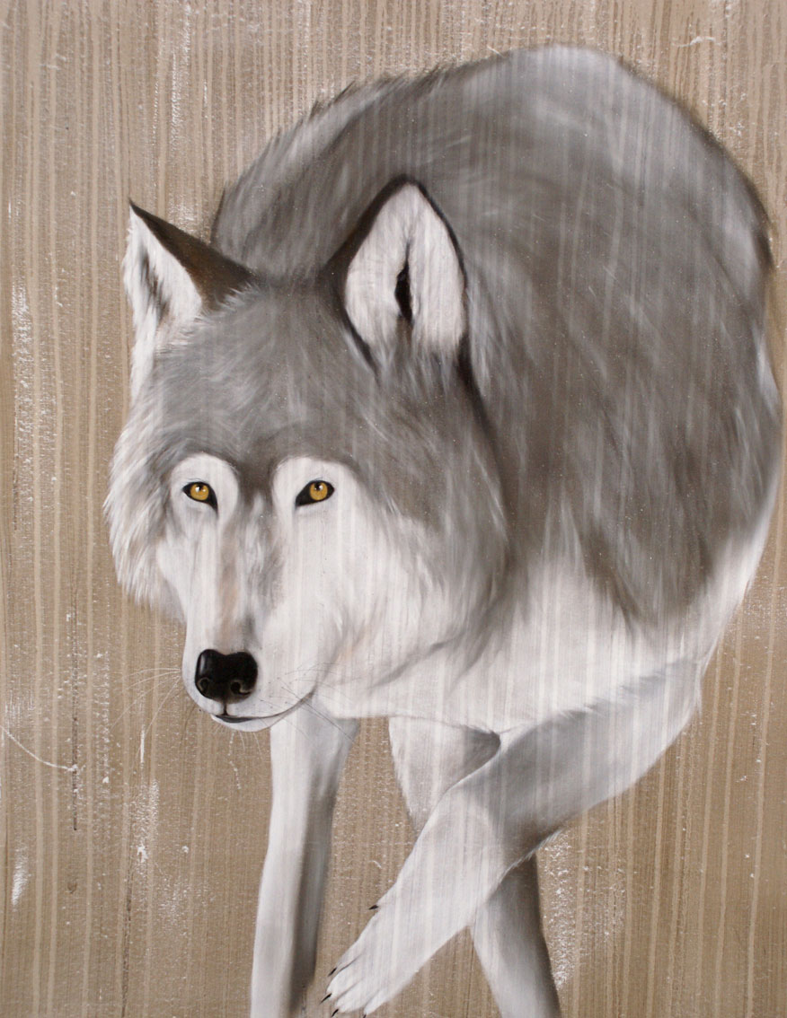 GREY WOLF grey-wolf Animal painting by Thierry Bisch pets wildlife artist painter canvas art decoration