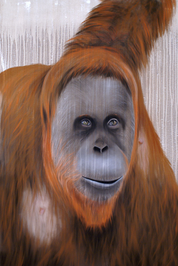 Orang-outang Orangutan Animal painting by Thierry Bisch pets wildlife artist painter canvas art decoration
