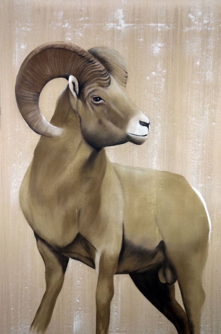 BIGHORN Mouflon%20Bighorn Thierry Bisch painter animals painting art decoration hotel design interior luxury nature biodiversity conservation