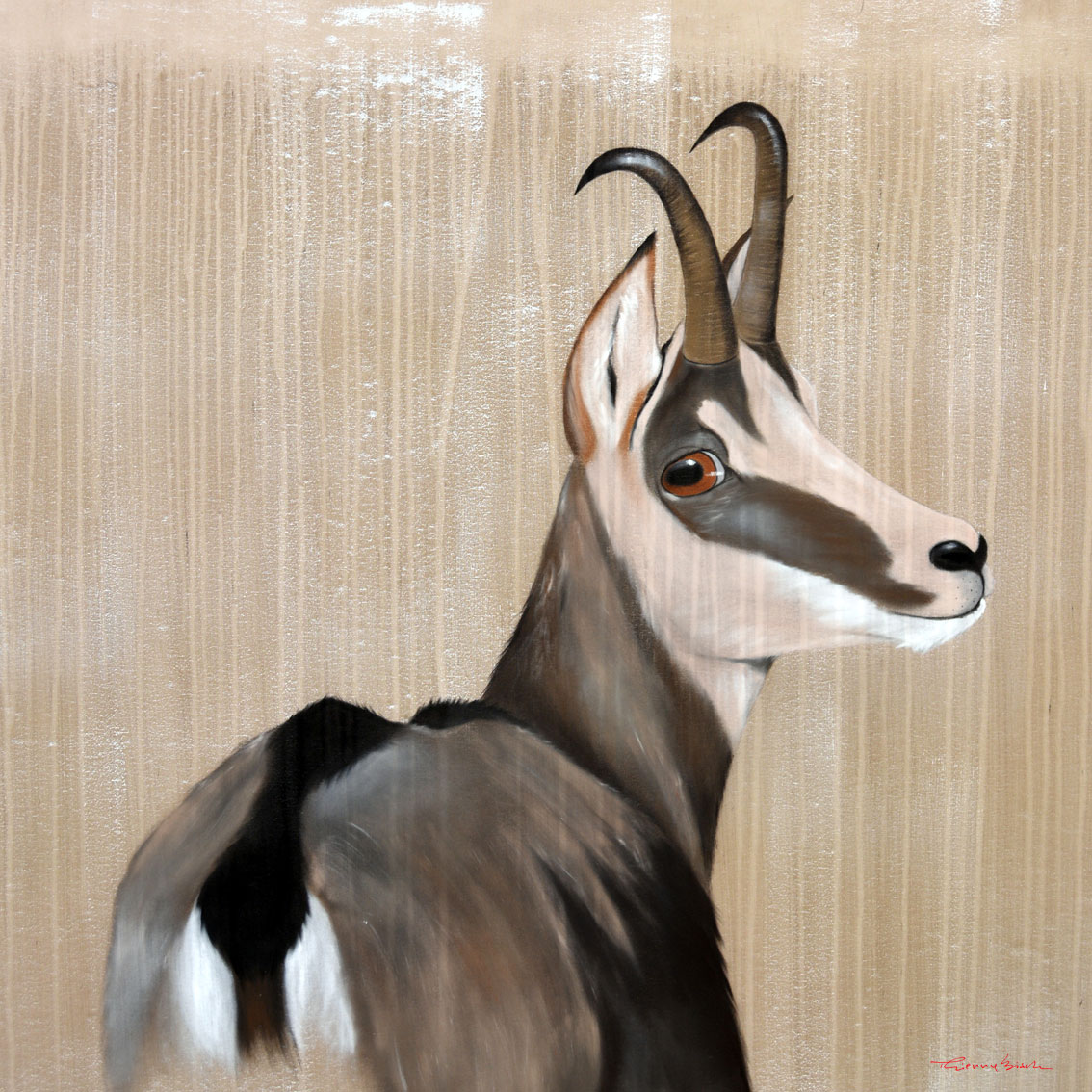 MOTIONLESS CHAMOIS CHAMOIS Animal painting by Thierry Bisch pets wildlife artist painter canvas art decoration