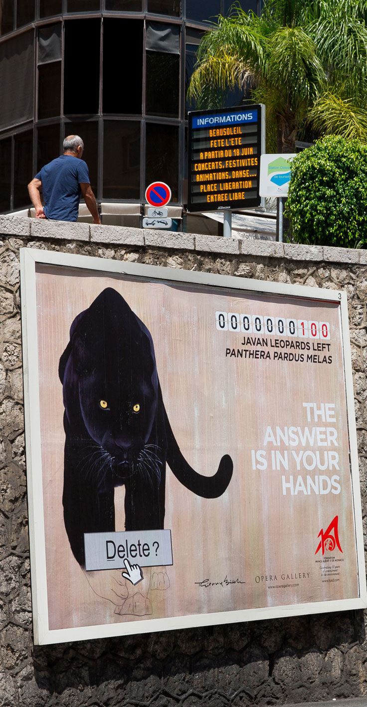 affiche panthere black%20panther%20java%20leopard%20threatened%20endangered%20extinction Thierry Bisch painter animals painting art decoration hotel design interior luxury nature biodiversity conservation