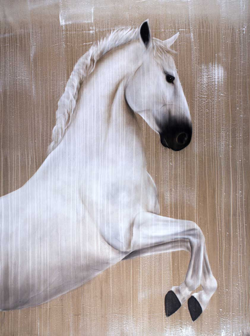 Lipizzaner thoroughbred-horse-Lipizzan Thierry Bisch Contemporary painter animals painting art  nature biodiversity conservation