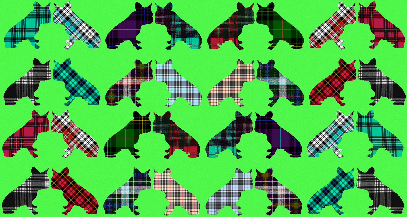 Tartans Frenchies 3 divers Thierry Bisch Contemporary painter animals painting art decoration nature biodiversity conservation