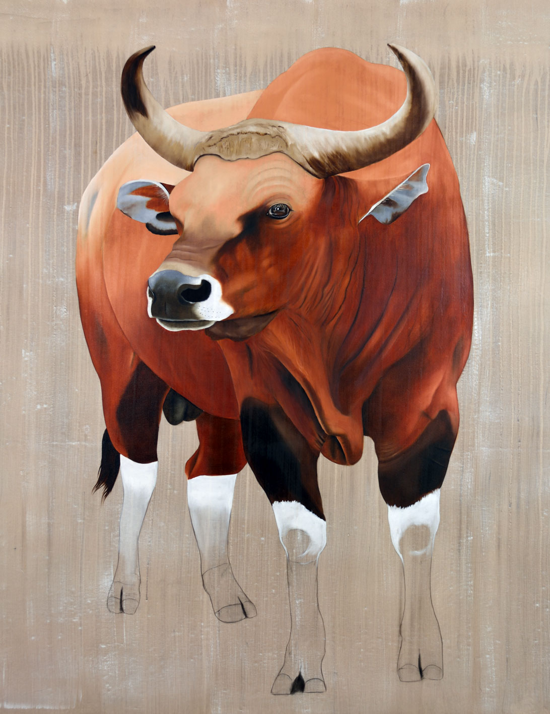 BOS JAVANICUS banteng-bos-javanicus-asian-red-bull-threatened-endangered-extinction Thierry Bisch painter animals painting art decoration hotel design interior luxury nature biodiversity conservation