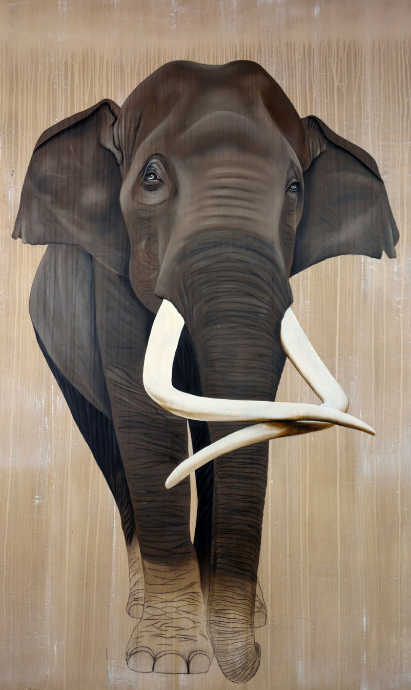 ELEPHAS MAXIMUS elephant-indian-asian-threatened-endangered-extinction Thierry Bisch painter animals painting art decoration hotel design interior luxury nature biodiversity conservation