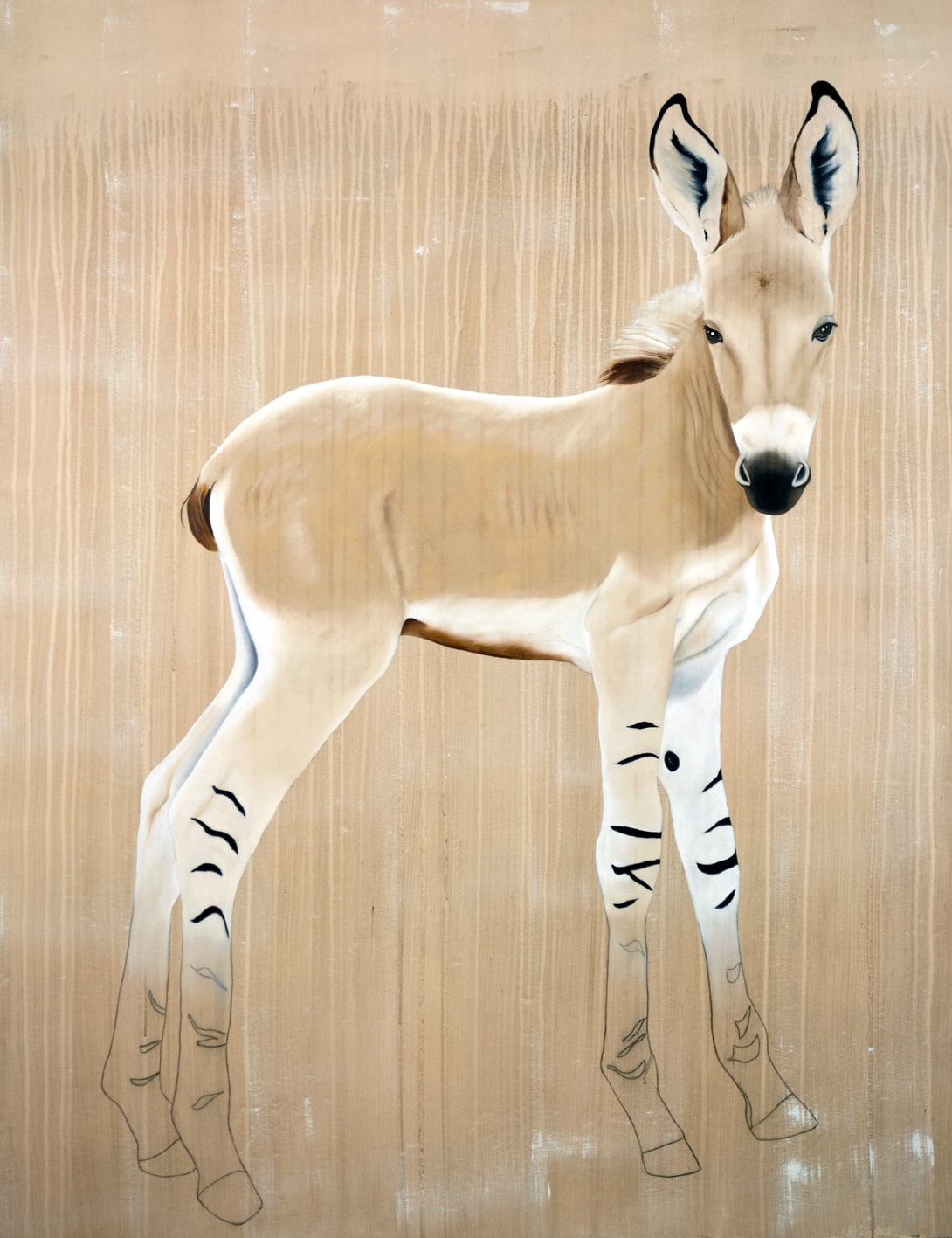 EQUUS ASINUS AFRICANUS african-wildass-wild-donkey-equus-asinus-africanus-threatened-endangered-thierry-bischextinction Animal painting by Thierry Bisch pets wildlife artist painter canvas art decoration