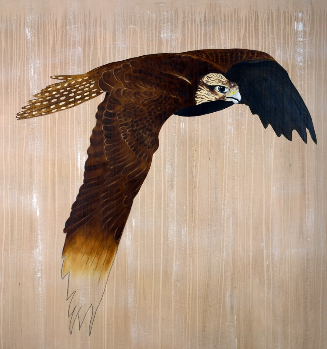 FALCO CHERRUG divers Thierry Bisch Contemporary painter animals painting art decoration nature biodiversity conservation