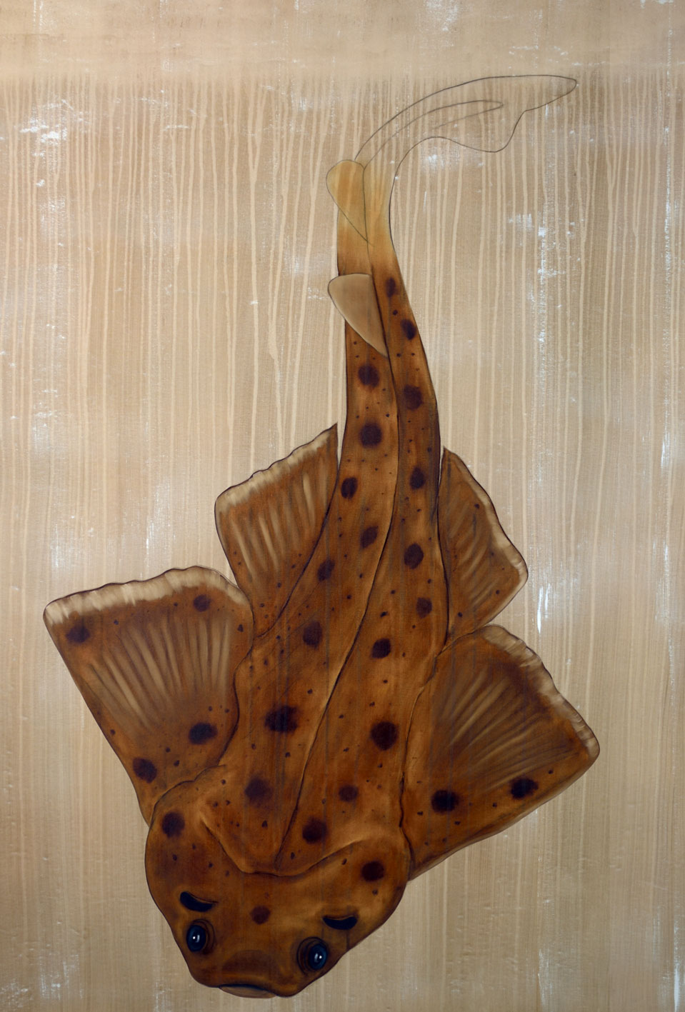 SQUATINA squatina angel-shark-angelshark-threatened-endangered-extinction Thierry Bisch painter animals painting art decoration hotel design interior luxury nature biodiversity conservation