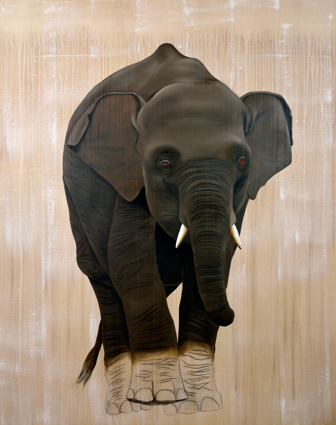 ELEPHAS MAXIMUS elephas-maximus-baby-elephant-asian-delete-threatened-endangered-extinction Animal painting by Thierry Bisch pets wildlife artist painter canvas art decoration