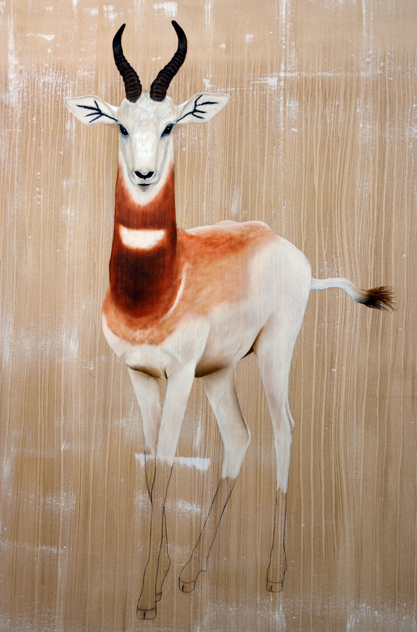 GAZELLA-DAMA dama-gazelle-addra-delete-threatened-endangered-extinction Thierry Bisch Contemporary painter animals painting art  nature biodiversity conservation