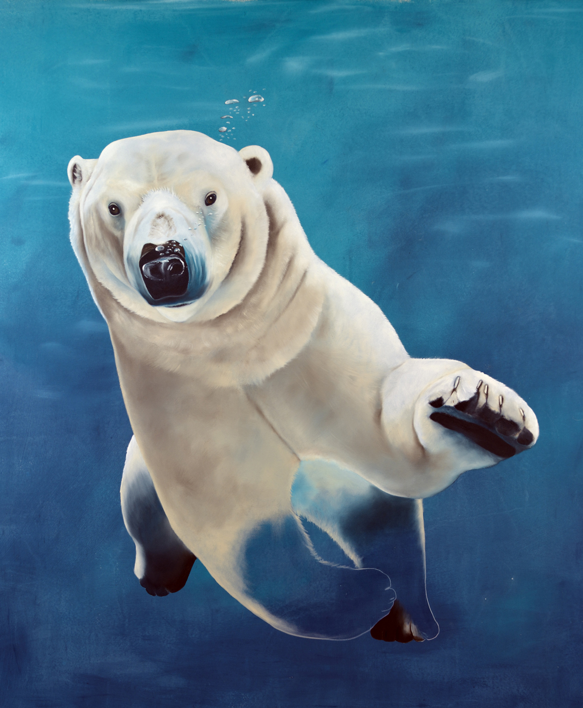 URSUS-MARITIMUS--1 divers Thierry Bisch Contemporary painter animals painting art decoration nature biodiversity conservation