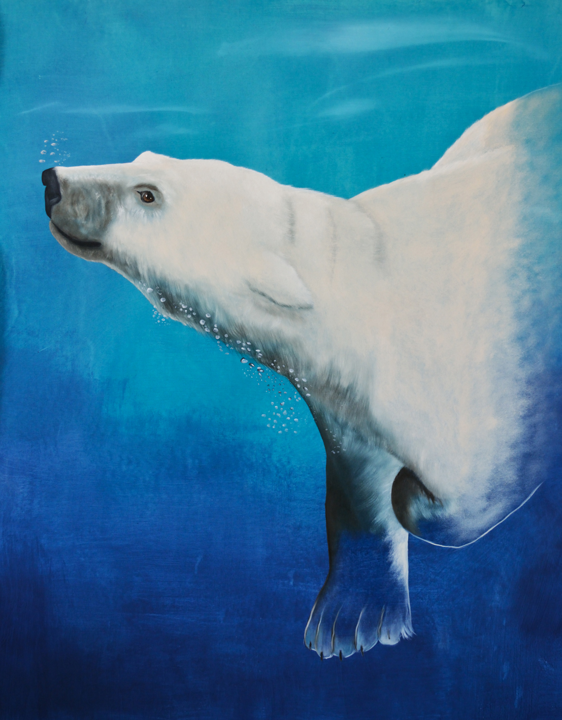URSUS-MARITIMUS--4 Polar-bear-white-bear-swiming-bear-ursus-maritimus Thierry Bisch painter animals painting art decoration hotel design interior luxury nature biodiversity conservation