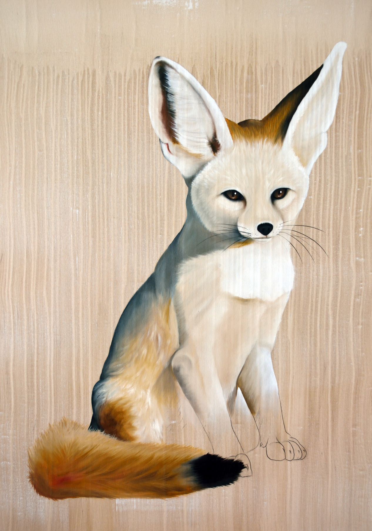 VULPUS-ZERDA Desert-fox-vulpus-zerda Thierry Bisch painter animals painting art decoration hotel design interior luxury nature biodiversity conservation
