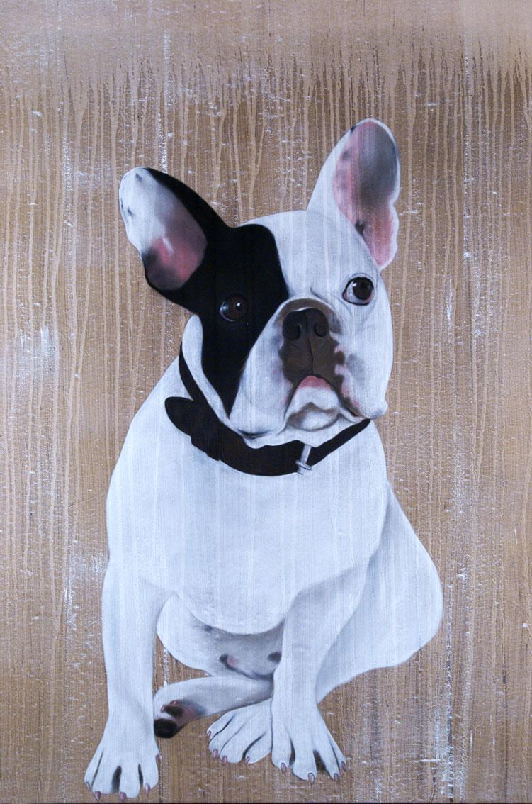 mr cute bouledogue fran ais animal familier thierry bisch artiste peintre animaux esp ces menac es. Black Bedroom Furniture Sets. Home Design Ideas