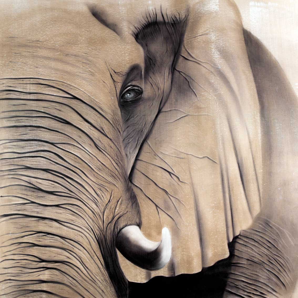 elephant 2 lephant elephant thierry bisch artiste peintre animaux esp ces menac es. Black Bedroom Furniture Sets. Home Design Ideas