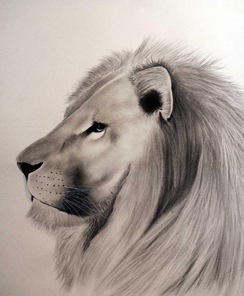 fr vignettes Peinture animaliere Lion