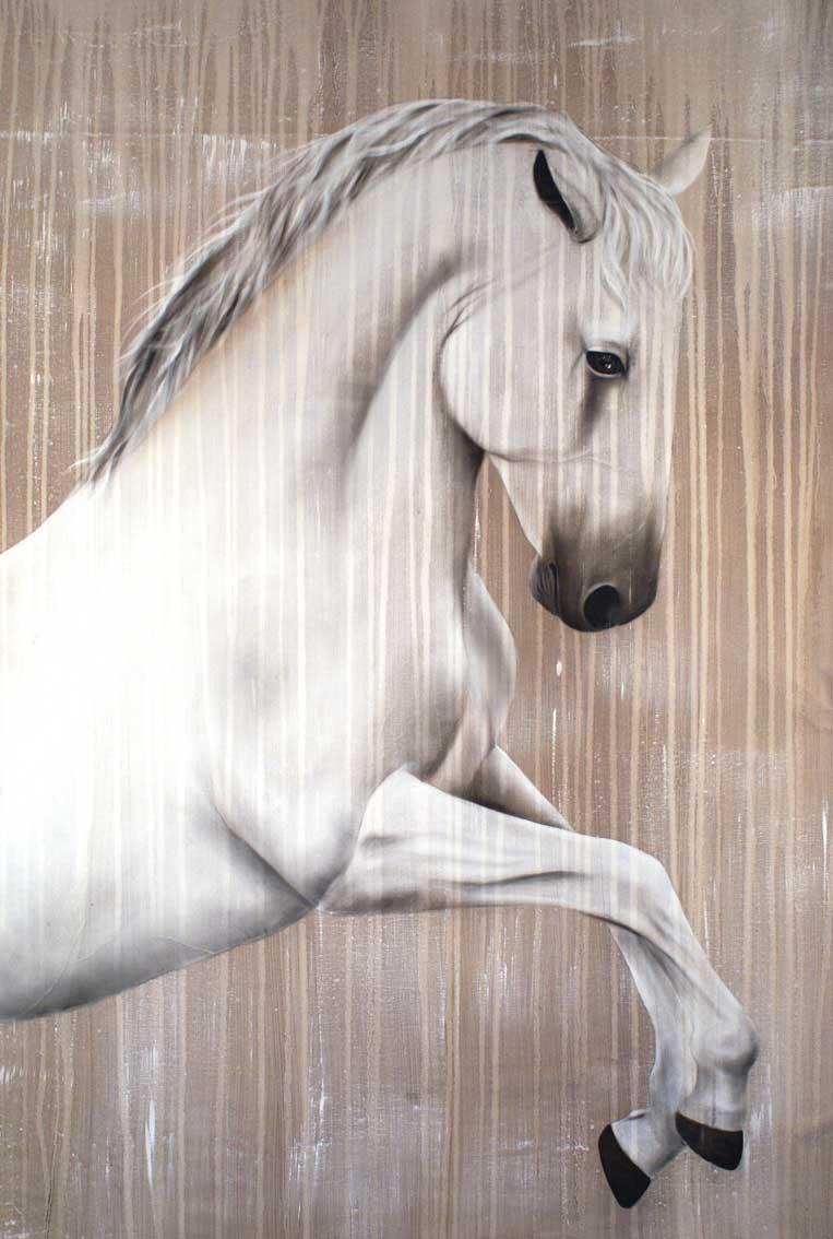 lipizzan cheval pur sang lipizzaner thierry bisch peintre animalier. Black Bedroom Furniture Sets. Home Design Ideas