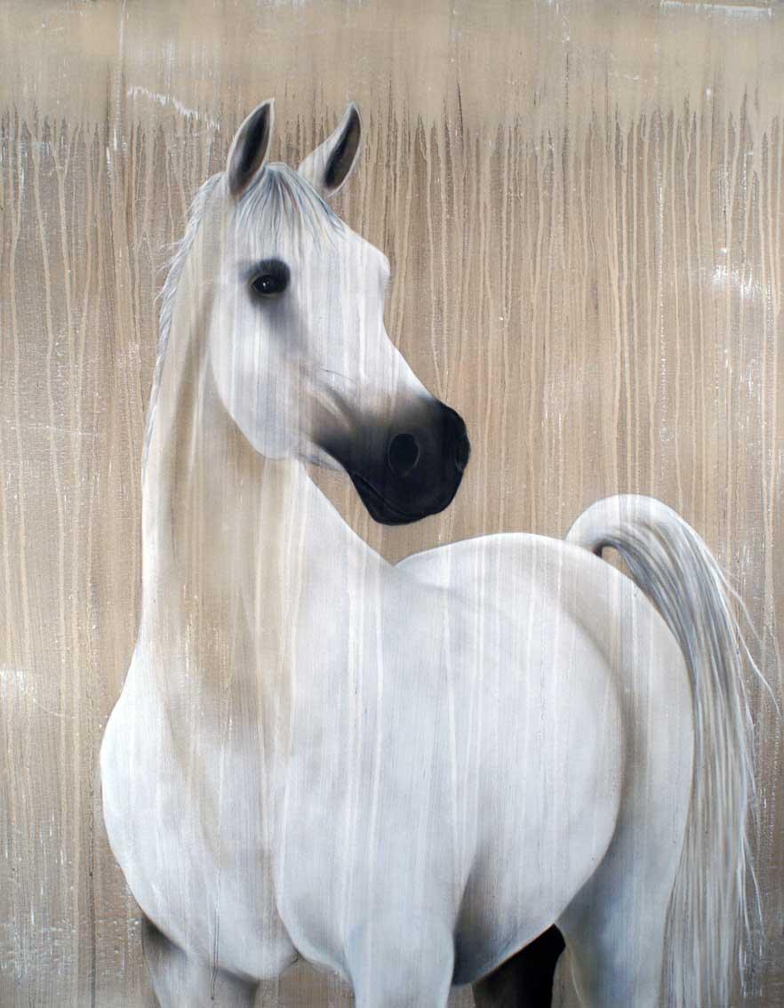 ronera cheval pur sang arabe thierry bisch artiste peintre animaux esp ces menac es. Black Bedroom Furniture Sets. Home Design Ideas