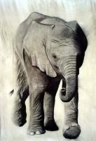 Elephanteau Elephant-baby Thierry Bisch Contemporary painter animals painting art  nature biodiversity conservation