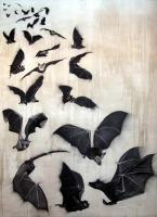 Bats bat-flight-of-bats Animal painting by Thierry Bisch pets wildlife artist painter canvas art decoration