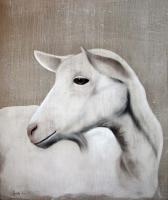 Chevrette goat-white-goat Animal painting by Thierry Bisch pets wildlife artist painter canvas art decoration