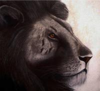 Lion-Edition-15-exemplaires lion Thierry Bisch Contemporary painter animals painting art  nature biodiversity conservation