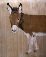 Romeo donkey Thierry Bisch Contemporary painter animals painting art  nature biodiversity conservation