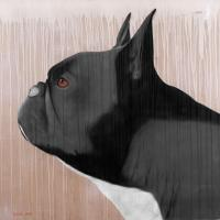 GREY FRENCHY french-bulldog-frenchy-pet Thierry Bisch painter animals painting art decoration hotel design interior luxury nature biodiversity conservation