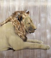 Lion-2 lion Thierry Bisch Contemporary painter animals painting art  nature biodiversity conservation