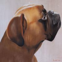 COHIBA boxer-dog-pet Thierry Bisch painter animals painting art decoration hotel design interior luxury nature biodiversity conservation