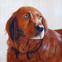 Eres Chien épagneul dog-spaniel-Irish-Setter-red-Setter-pet- Thierry Bisch painter animals painting art decoration hotel design interior luxury nature biodiversity conservation