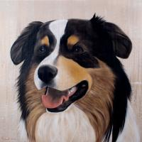 Gus Dog Australian-shepperd-aussie-truffle-dog-pet Thierry Bisch painter animals painting art decoration hotel design interior luxury nature biodiversity conservation