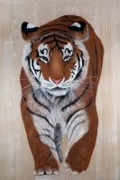 WALKING TIGER TIGER Thierry Bisch Contemporary painter animals painting art  nature biodiversity conservation