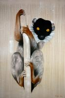 MADAGASCAR-LEMUR collared-lemur-madagascar Thierry Bisch Contemporary painter animals painting art  nature biodiversity conservation