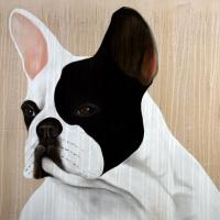 MR-FRENCHY french-bulldog-frenchy-pet Thierry Bisch painter animals painting art decoration hotel design interior luxury nature biodiversity conservation