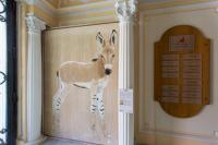 FONDATION PRINCE ALBERT II DE MONACO african-wildass-wild-donkey-equus-asinus-africanus-threatened-endangered-thierry-bischextinction Thierry Bisch painter animals painting art decoration hotel design interior luxury nature biodiversity conservation