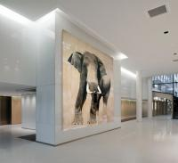 ELEPHAS-MAXIMUS elephant-Asian-elephas-maximus Thierry Bisch painter animals painting art decoration hotel design interior luxury nature biodiversity conservation