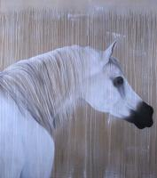 Pur-Sang-Arabe-02 arabian-thoroughbred-horse Thierry Bisch Contemporary painter animals painting art  nature biodiversity conservation