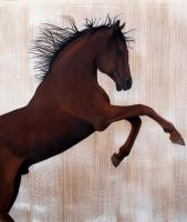 RAAD thoroughbred-horse Thierry Bisch Contemporary painter animals painting art  nature biodiversity conservation