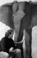 Timba elephant Thierry Bisch painter animals painting art decoration hotel design interior luxury nature biodiversity conservation