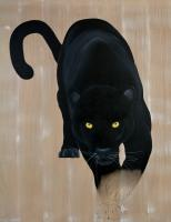 PANTHERA-PARDUS-MELAS-2 panther-black-panther-panthera-pardus-melas Thierry Bisch painter animals painting art decoration hotel design interior luxury nature biodiversity conservation