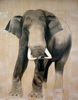 ELEPHAS-MAXIMUS animal-painting Thierry Bisch Contemporary painter animals painting art  nature biodiversity conservation