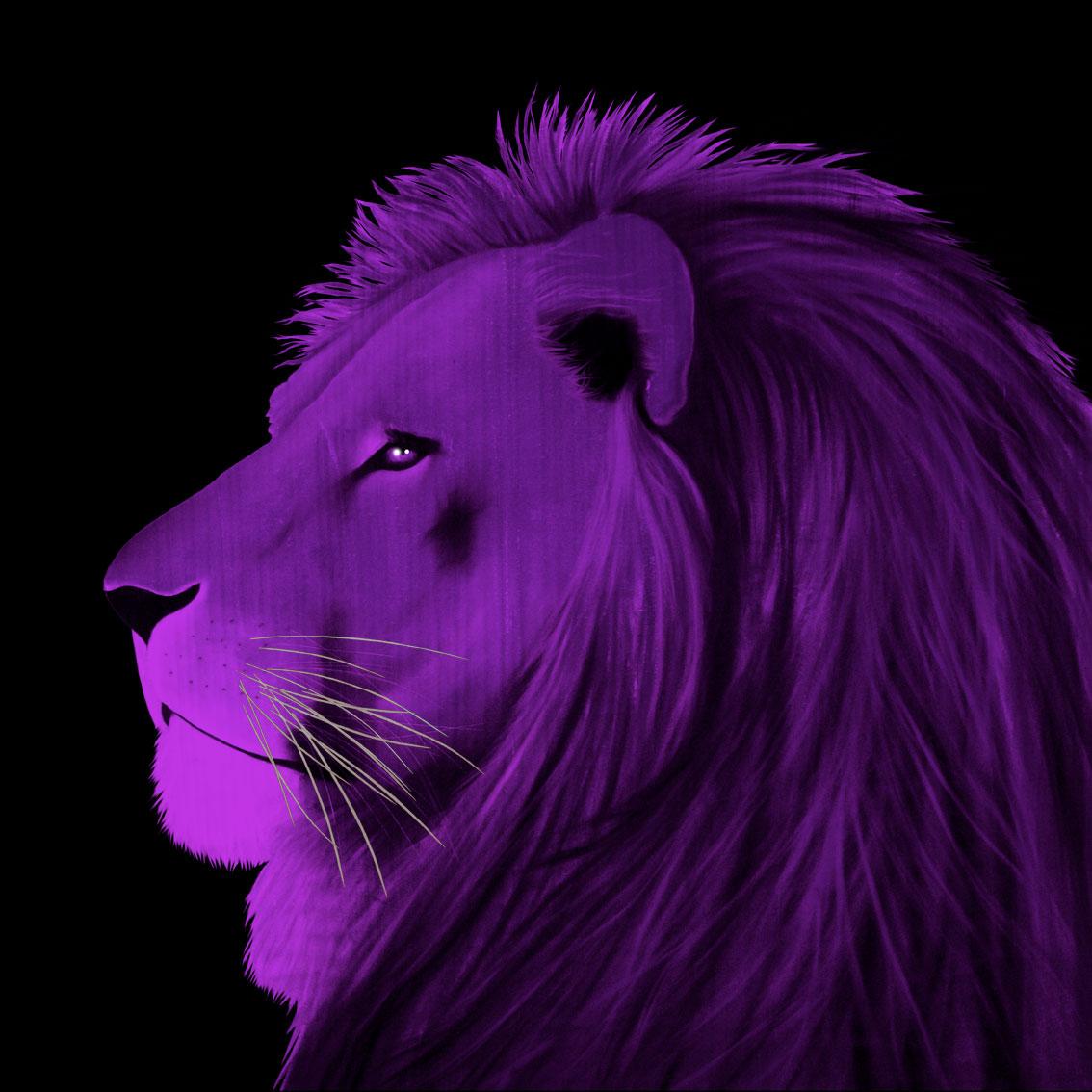 LION-VIOLET